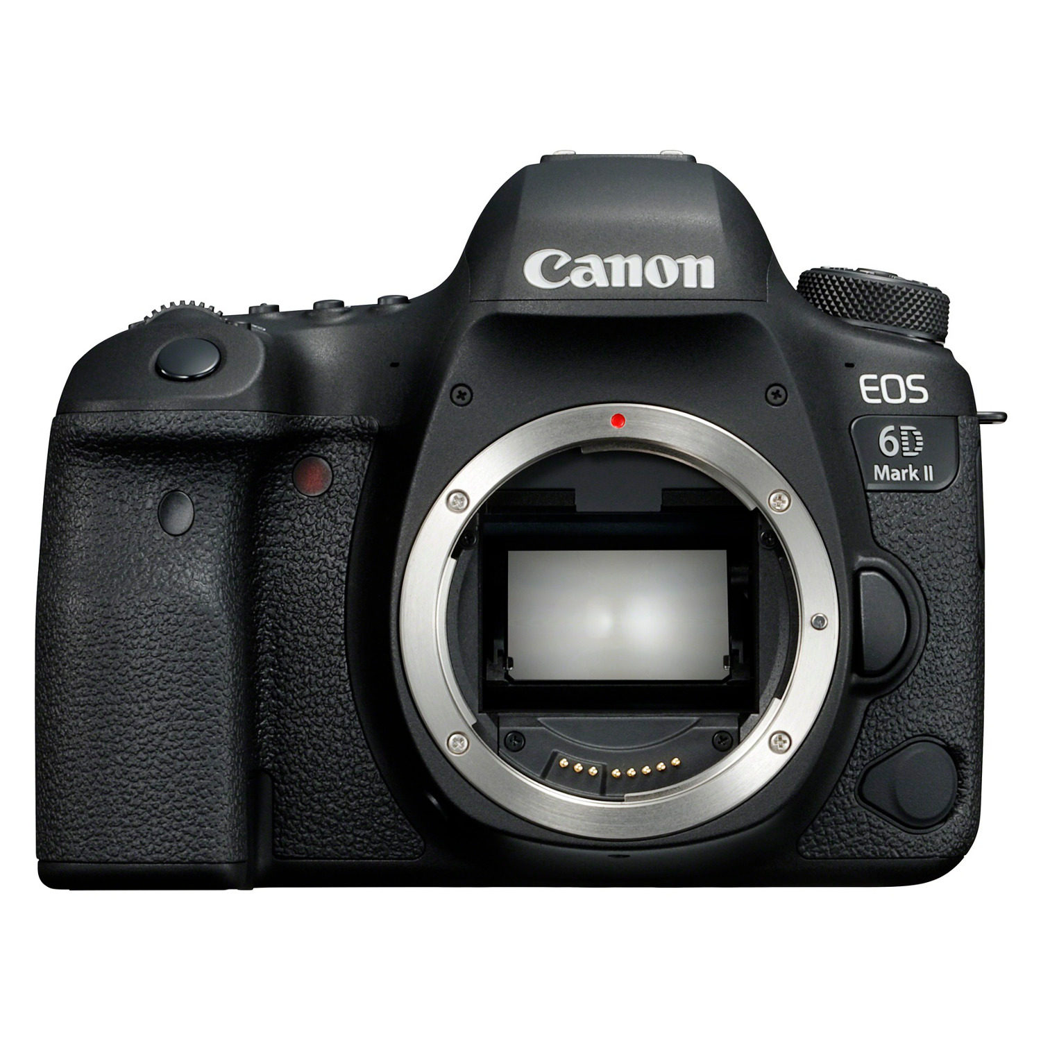 Canon EOS 6DII + 24-105 IS STM
